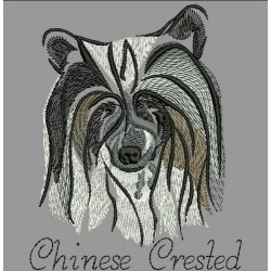 ANA CHINESE CRESTED COLORWASH