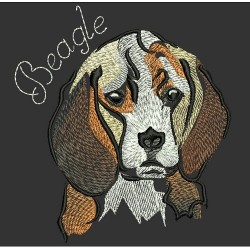 BEAGLE COLORWASH