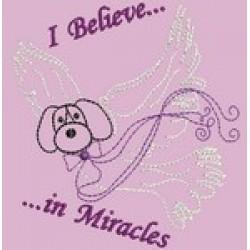 CAROLYNS MIRACLE