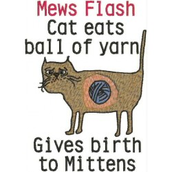 CAT ATE YARN