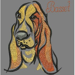 COLORWASH BASSET