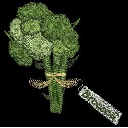 FARMERS MARKET BROCCOLI