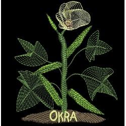 FARMERS MARKET OKRA