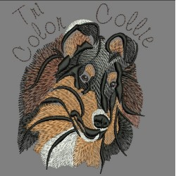 TRI COLOR COLLIE COLORWASH