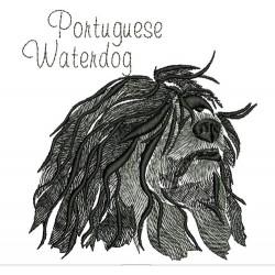 ANA PORTUGUESE WATERDOG COLORWASH